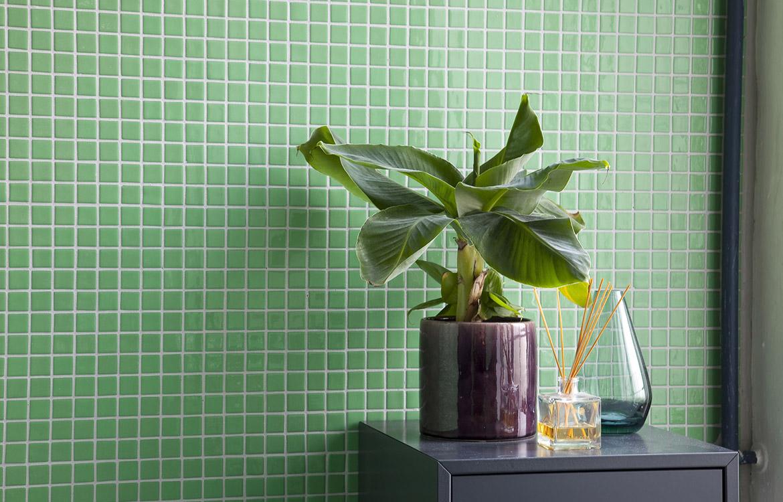 groen_flise_plante